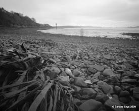 Photo: Fort Road Beach, shadow from Alex. 37mm focal length 6x6 Fuji ACROSS 100