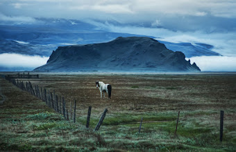 Photo: Horse in Iceland  I'm adding some favorite photos of horses and monkeys to the album for you to enjoy. This horse below is in front of a strange rock outcropping in Iceland. Other photos in there are a snow monkey in Nagano, some monkeys in Cambodia and Kuala Lumpur, and some horses in Yellowstone.  - from Trey Ratcliff at http://www.StuckInCustoms.com - all images Creative Commons Noncommercial