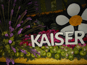 Photo: Pasadena Rose Parade 2013  Kaiser Float ~Enjoy looking how they used Red Apples of the float