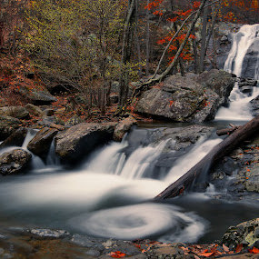 Lower White Oak Canyon Falls by Mike Lennett - Landscapes Waterscapes ( water, white oak, national park, park, autumn, swirl, falls, water falls, virginia, long exposure, mike lennett, shenandoah )