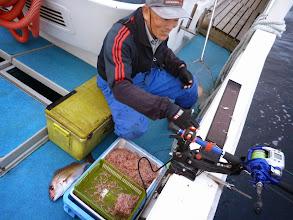 Photo: バンバン釣ります!