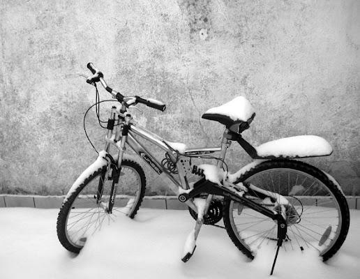 L' Inverno... di Felicia
