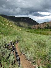 Photo: More nice trail