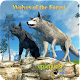Wolves of the Forest