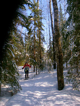 Photo: The next day we snowshoed around the peninsula to create a trail but it really wasn't necessary as the snow was well packed from the wind or snowmobiles.