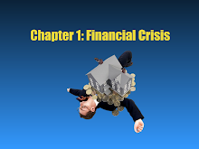 Introduction to Financial Crisis