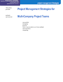Study on Project Management Strategies - Multi-company