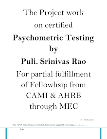 Psychometric Testing Professional