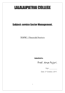 Financial Service Sector