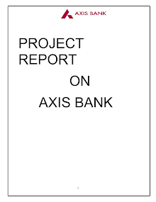 axis bank project