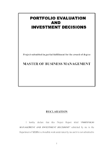 Portfolio Evaluation and Investment Decisions MBA Project