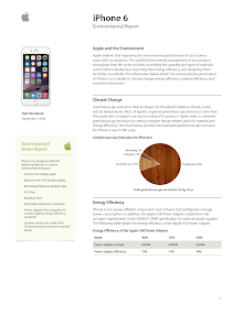 Business Environment Report on iPhone 6
