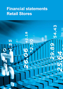 Study on Financial statements of Retail Stores
