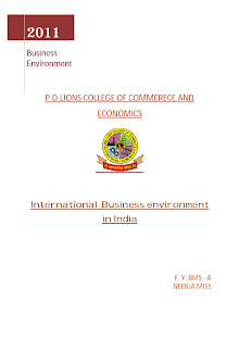 International Business environment In INDIA