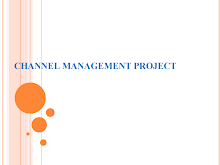 Project on Channel Management