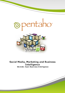 Study on Social Media, Marketing and Business Intelligence