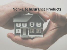 Non Life Insurance Products