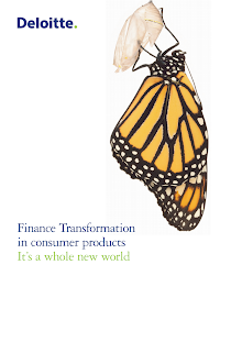 Finance Project on Finance Transformation in consumer products