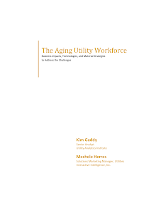 Business Impacts, Technologies, and Material Strategies - Aging Utility Workforce