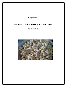 Mangalore Cashew Industries operations