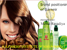 PRESENTATION ON BRAND POSITIONING OF GARNIER