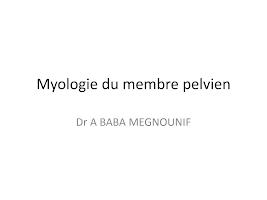 shémas Myologie du membre pelvien.pdf