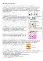 Résumé t_cartilagineux.pdf