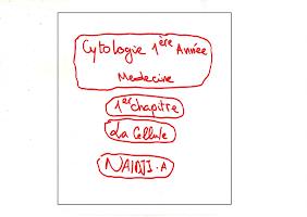 Cellule Résumé .pdf