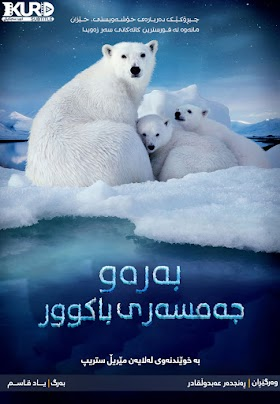 To the Arctic Poster