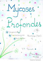 11-Mycoses profondes resumé.pdf