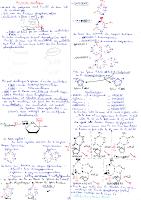 4-Acides nucleiques.pdf