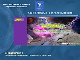 COURS -Biosynthse final.pdf
