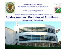 Protéines.ppt