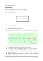 22. Etude des Peptides univ mosta.pdf