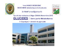 Glycolyse+Devenir du pyruvate 2016-2017.ppt