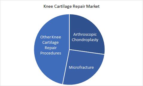 Knee Cartilage Repair Market