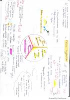 fièvre typhoide resumé.pdf