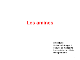 Amines_.pdf