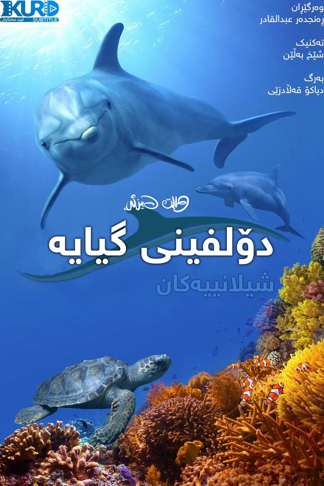 Dolphin Reef kurdish poster