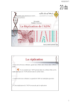 La replication de l ADN.pdf