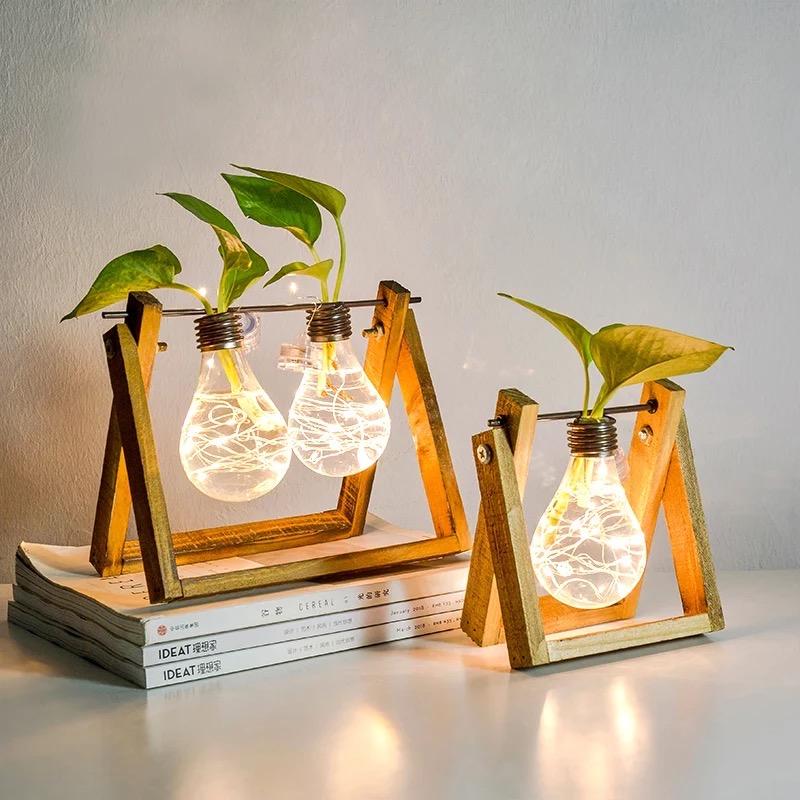 Vase hydroponique ampoule