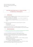 PHYSIOPATHOLOGIE DES ULCERES GASTRO.pdf