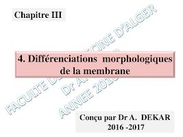 Diapo Différenciations membranaires.pdf