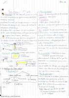 Tissu Osseux ( sans ossification) cours 2015_2016_Inès-H.pdf