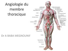 Angiologie du membre thoracique.pptx