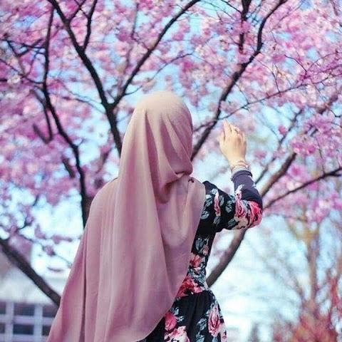 sana99 profile picture