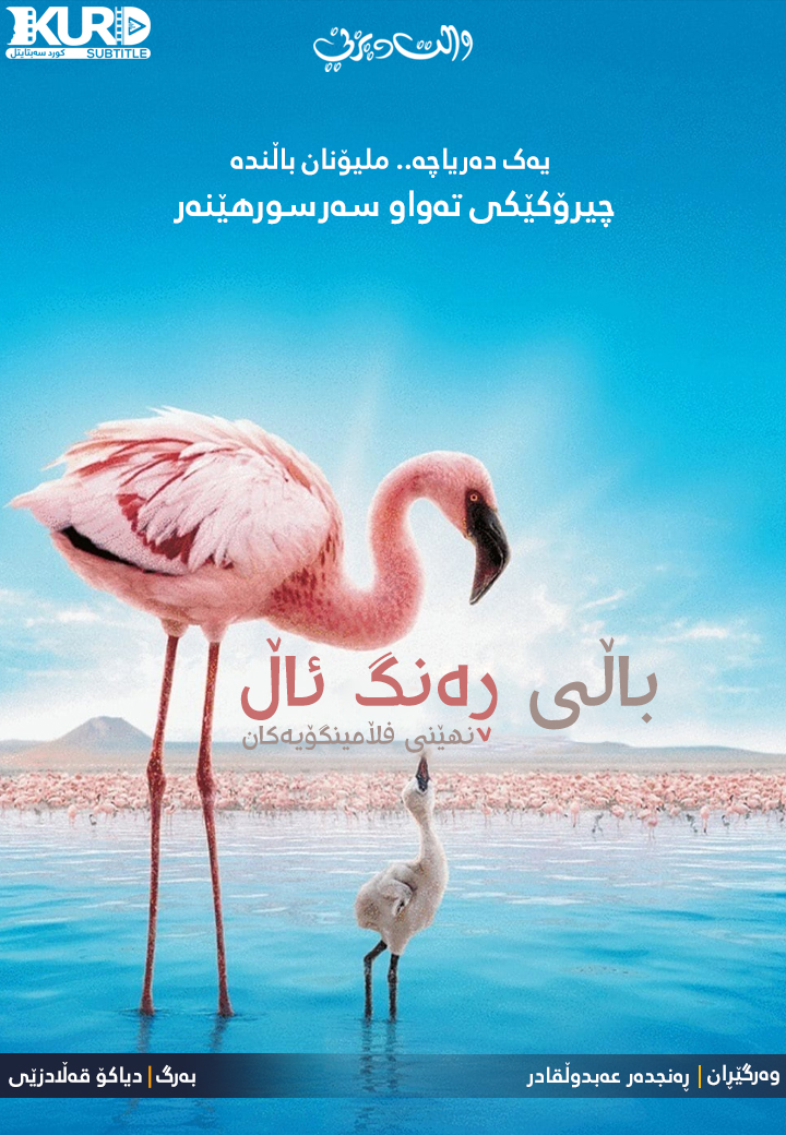 The Crimson Wing: Mystery of the Flamingos kurdish poster