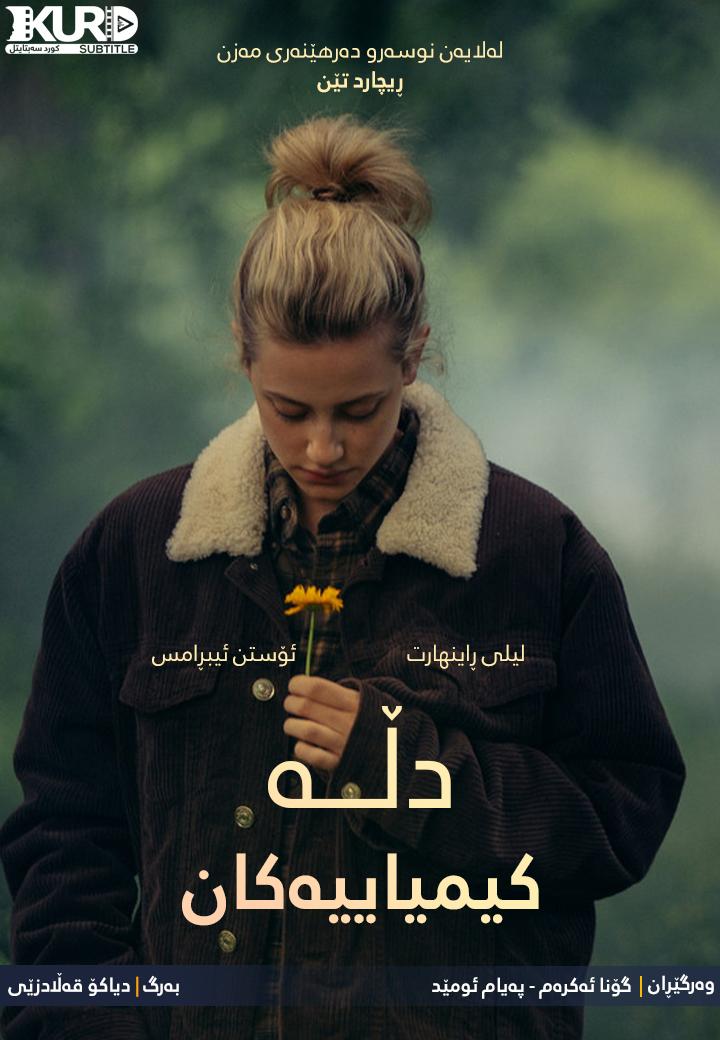 Chemical Hearts kurdish poster