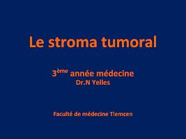 03-Le Stroma Tumoral.ppt