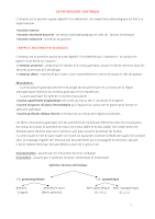 2- Physiologie gastrique physio digestive.docx